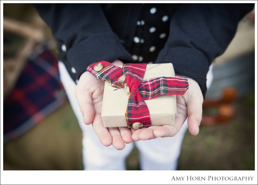 amy horn photography, madison indiana photographer, christmas mini session, barn photo, christmas photo, children, inspiration, christmas card photo ideas, amy horn, milton kentucky photographer, lawrenceburg indiana photographer, family photographer, child photographer, christmas portrait