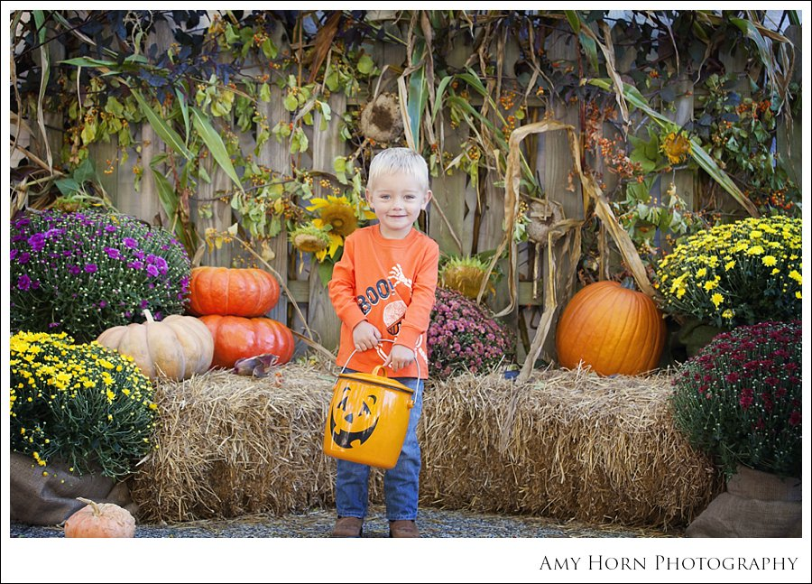 madison indiana photographer, child portrait photographer, fall mini session, styled session, halloween costume session, amy horn photography, family photographer, madison mini sessions, little golden fox, fall photo session, child portraits.jpg