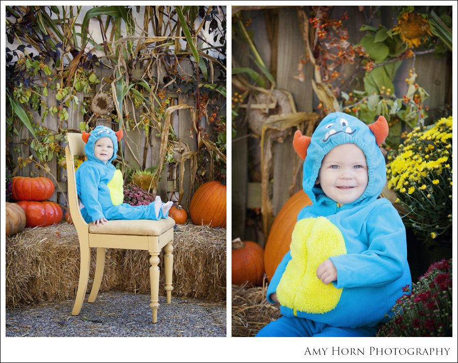 madison indiana photographer, child portrait photographer, fall mini session, styled session, halloween costume session, amy horn photography, family photographer, madison mini sessions, little golden fox, fall photo session, child portraits021.jpg