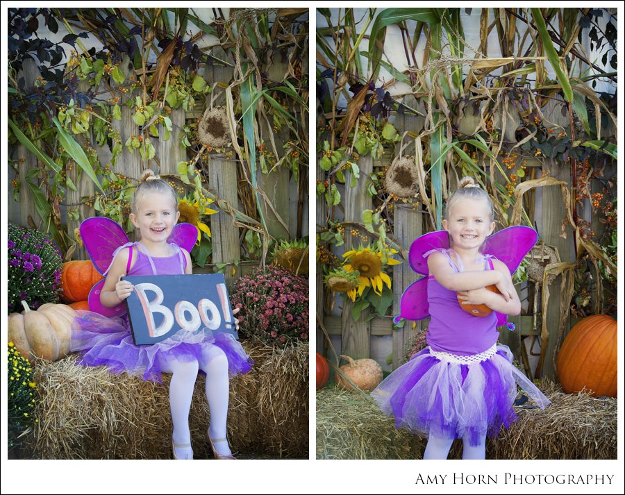 madison indiana photographer, child portrait photographer, fall mini session, styled session, halloween costume session, amy horn photography, family photographer, madison mini sessions, little golden fox, fall photo session, child portraits022.jpg