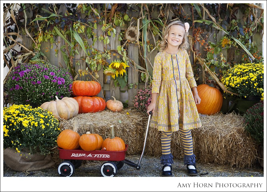 madison indiana photographer, child portrait photographer, fall mini session, styled session, halloween costume session, amy horn photography, family photographer, madison mini sessions, little golden fox, fall photo session, child portraits023.jpg