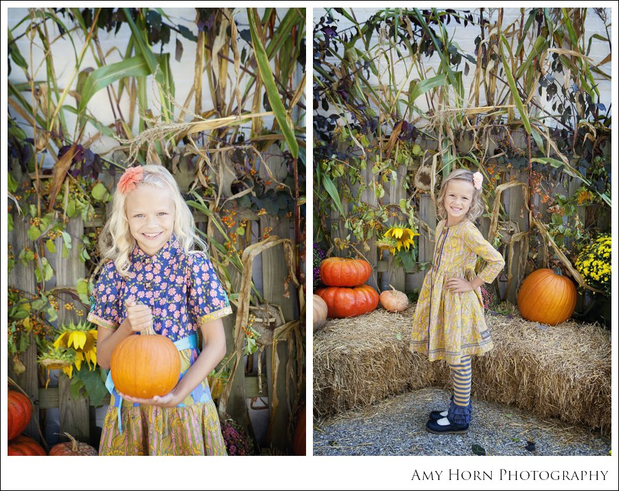 madison indiana photographer, child portrait photographer, fall mini session, styled session, halloween costume session, amy horn photography, family photographer, madison mini sessions, little golden fox, fall photo session, child portraits025.jpg