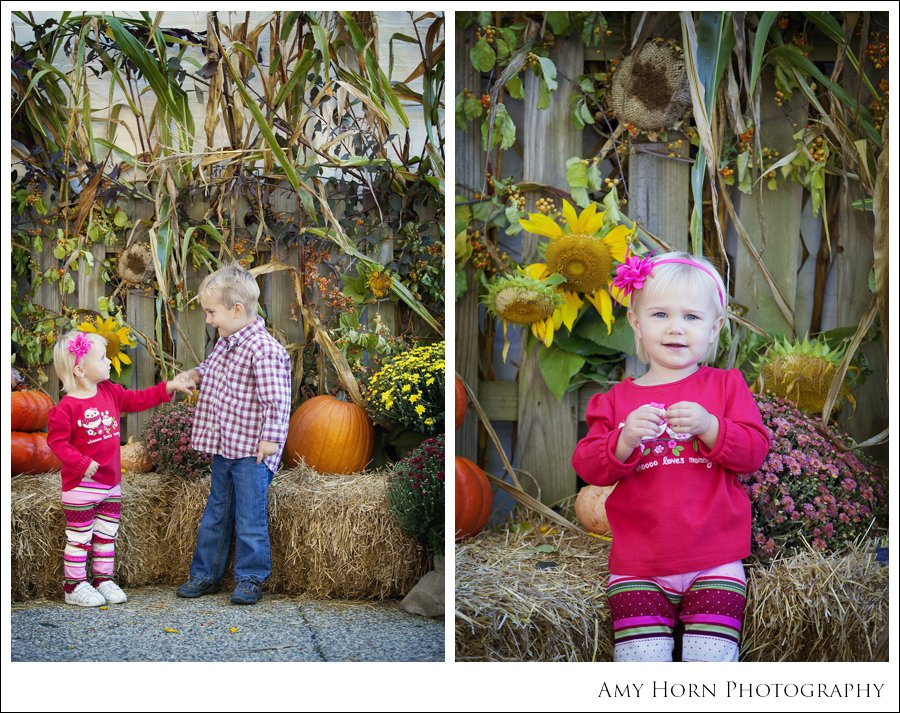 madison indiana photographer, child portrait photographer, fall mini session, styled session, halloween costume session, amy horn photography, family photographer, madison mini sessions, little golden fox, fall photo session, child portraits028.jpg