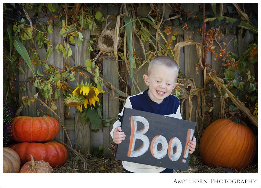 madison indiana photographer, child portrait photographer, fall mini session, styled session, halloween costume session, amy horn photography, family photographer, madison mini sessions, little golden fox, fall photo session, child portraits029.jpg