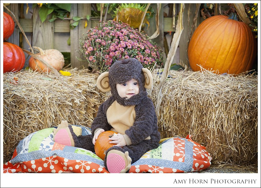 madison indiana photographer, child portrait photographer, fall mini session, styled session, halloween costume session, amy horn photography, family photographer, madison mini sessions, little golden fox, fall photo session, child portraits034.jpg